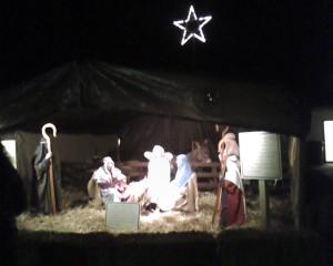 Nativity Scene 2012